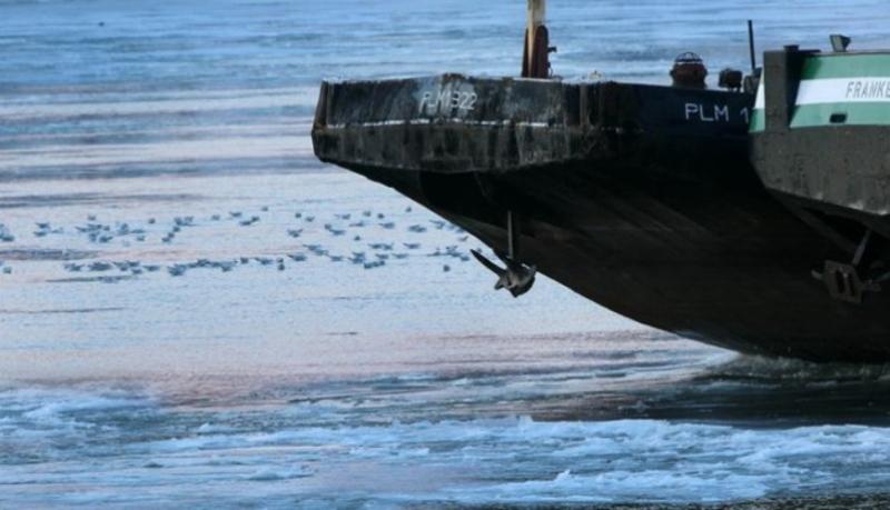 Дунав поново безбедан за пловидбу